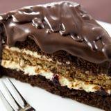 Gâteau avec la glaçure de chocolat Photo stock