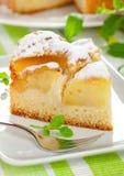 Gâteau avec la pomme Photographie stock libre de droits