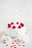 Gâteau blanc avec des framboises sur le fond blanc Photo libre de droits