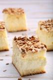 Gâteau crémeux doux avec les graines de tournesol rôties Photo stock