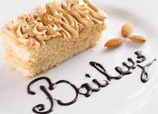 Gâteau crémeux du plat blanc image libre de droits