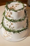 Gâteau décoré des feuilles vertes fraîches Photographie stock libre de droits