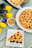 Gâteau délicieux avec la saveur de myrtille et de citron Images stock