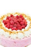 Gâteau délicieux de framboise Photographie stock libre de droits
