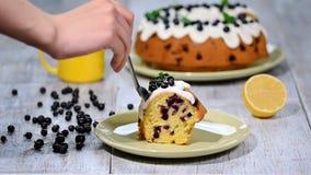 Gâteau délicieux sensible avec le cassis Consommation d'un morceau de gâteau avec le cassis clips vidéos