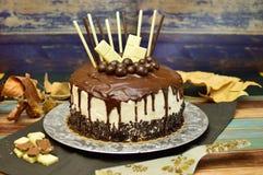 Gâteau d'égouttement fait à la maison Photographie stock