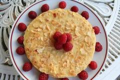 Gâteau d'amande avec des framboises autour et sur de dessus Images stock