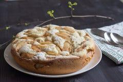 Gâteau d'Apple Charlotte Photographie stock libre de droits