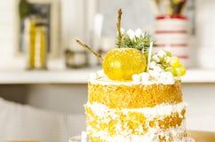 Gâteau de biscuit de chocolat pour Noël Photographie stock libre de droits