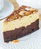 Gâteau de 'brownie' Photo libre de droits