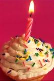 Gâteau de célébration Images libres de droits