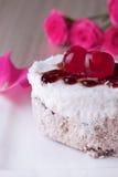 Gâteau de célébration avec des cerises Images libres de droits