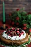 Gâteau de canneberge Image libre de droits
