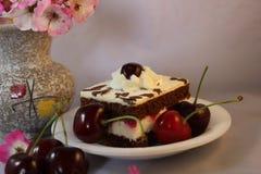 Gâteau de cerise avec de la crème et des cerises Photos stock