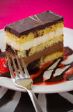 Gâteau de Choco Photos stock