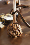 Gâteau de Choco Image libre de droits