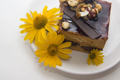 Gâteau de Choco décoré des fleurs Images libres de droits