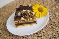 Gâteau de Choco sur le fond de paille Photo libre de droits