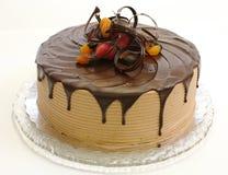 Gâteau de chocolat images stock