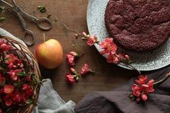 Gâteau de chocolat avec humeur d'automne Images stock