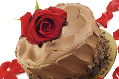 Gâteau de chocolat avec Rose rouge Photo stock