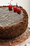 Gâteau de chocolat d'un plat Image stock