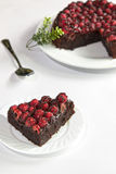 Gâteau de chocolat de framboise Photographie stock libre de droits