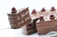 Gâteau de chocolat sur la cuillère en métal, au goût âpre du plat blanc, du gâteau avec des cerises et de la crème, pâtisserie, p Photos libres de droits