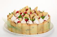 Gâteau de citron et de framboise Image libre de droits