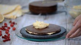 Gâteau de couche de miel de chocolat Medovik Confiseur professionnel faisant le gâteau délicieux clips vidéos