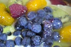 Gâteau de crème anglaise de fruit Photographie stock