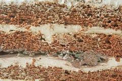 Gâteau de crème d'éponge de chocolat Image libre de droits