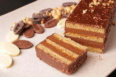 Gâteau de crêpe de chocolat et de noisette Image stock