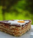 Gâteau de Flowerlicious image libre de droits