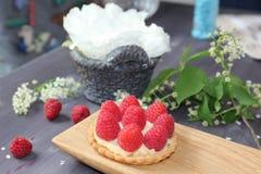 Gâteau de framboise Image stock