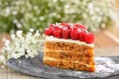 Gâteau de framboise de plat photographie stock libre de droits