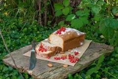 Gâteau de fruit avec la groseille rouge dans le jardin Photos libres de droits