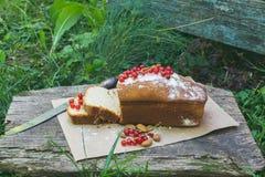 Gâteau de fruit avec la groseille rouge et l'amande dans le jardin Image libre de droits