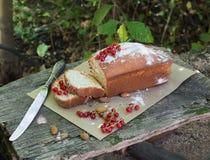 Gâteau de fruit avec la groseille rouge et l'amande dans le jardin Images libres de droits