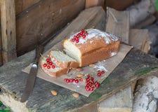 Gâteau de fruit avec la groseille rouge et l'amande dans le jardin Photographie stock libre de droits