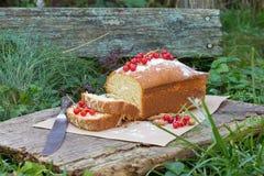 Gâteau de fruit avec la groseille rouge et l'amande dans le jardin Images stock
