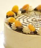 Gâteau de fruit d'abricot Images libres de droits