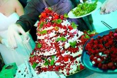 Gâteau de fruits de forêt Image libre de droits
