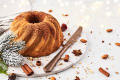 Gâteau de marbre de bundt de vanille et de chocolat photos libres de droits