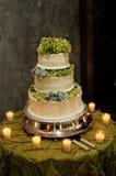 Gâteau de mariage avec des bougies Photos libres de droits