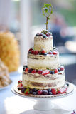 Gâteau de mariage délicieux décoré des fruits et des baies Photos stock