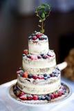Gâteau de mariage délicieux de chocolat décoré des fruits et des baies Image libre de droits