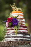 Gâteau de mariage nu de ` de ` rustique Photos libres de droits