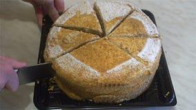 Gâteau de miel humain de coupe de mains Photographie stock