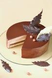 Gâteau de mousse de noisette de chocolat Photos libres de droits